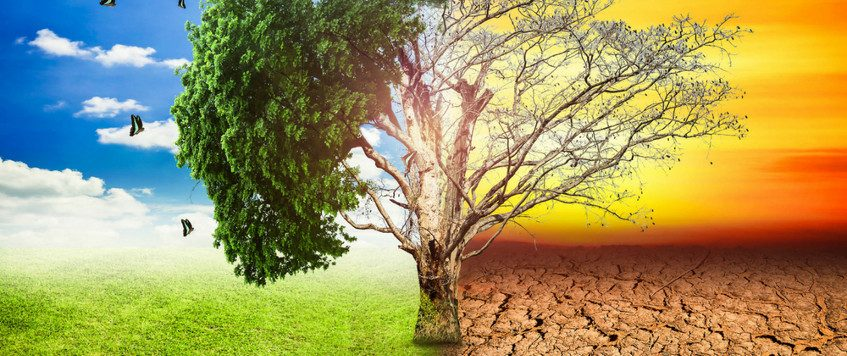 Congreso Mundial de Cambio Climático en Córdoba